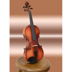 Suzuki Nagoya FS-10 4/4 Full Size Violin Outfit With Case, Rosin & Bow (FS10)