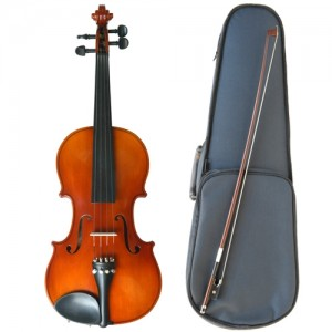 Suzuki Nagoya 220 4/4 Full Size Violin Outfit With Case, Rosin & Bow (#220)